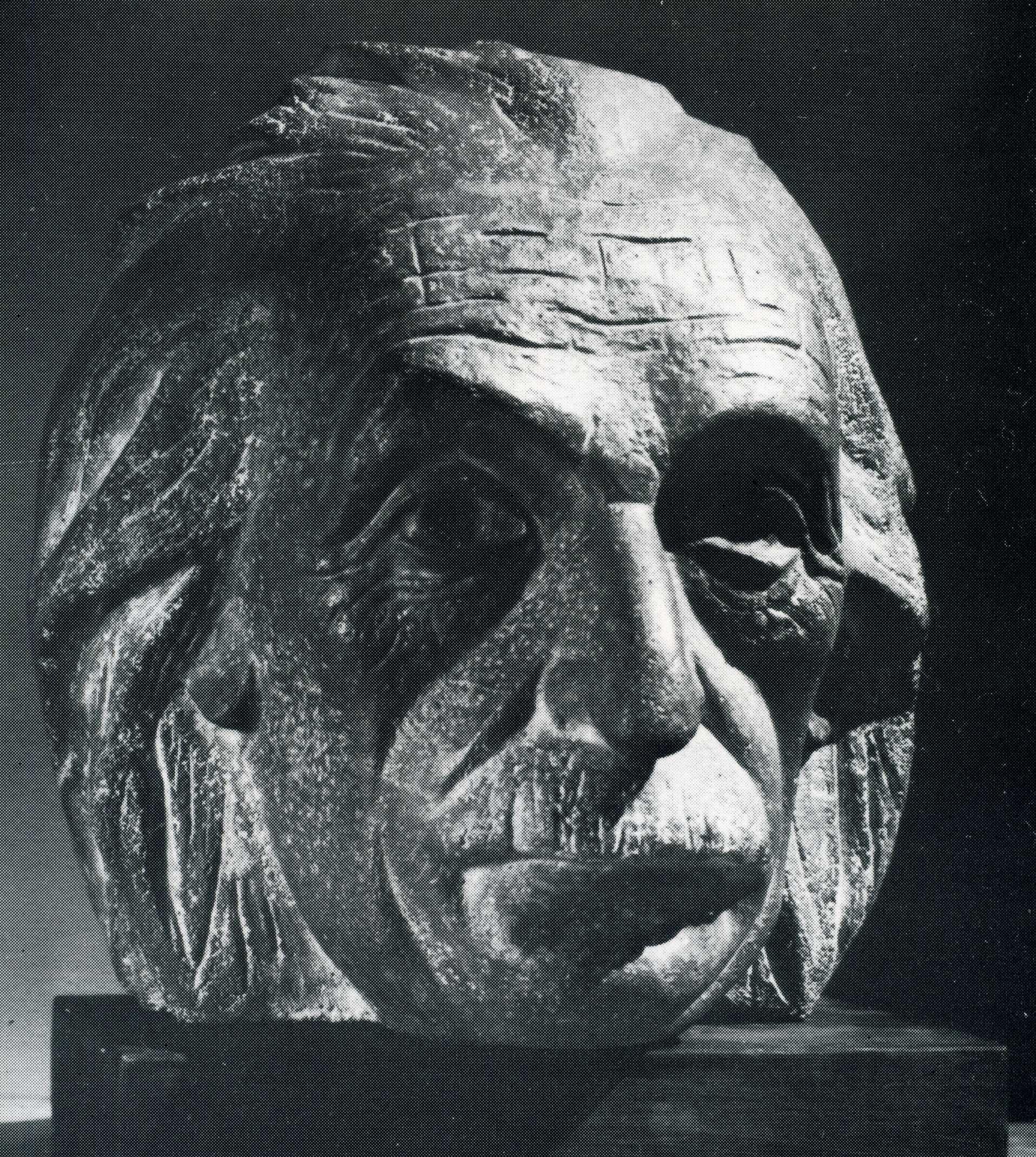 Cabeza de Einstein